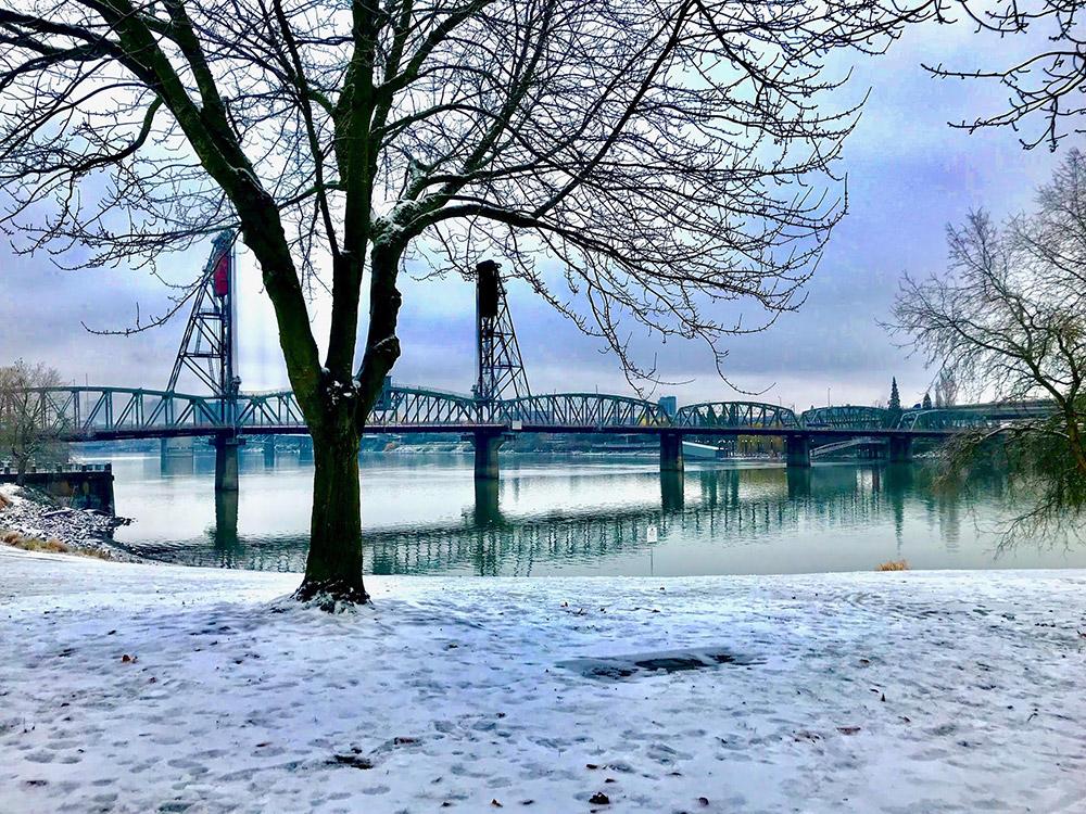 Pam Sproul - Bridge Winter View Willamette