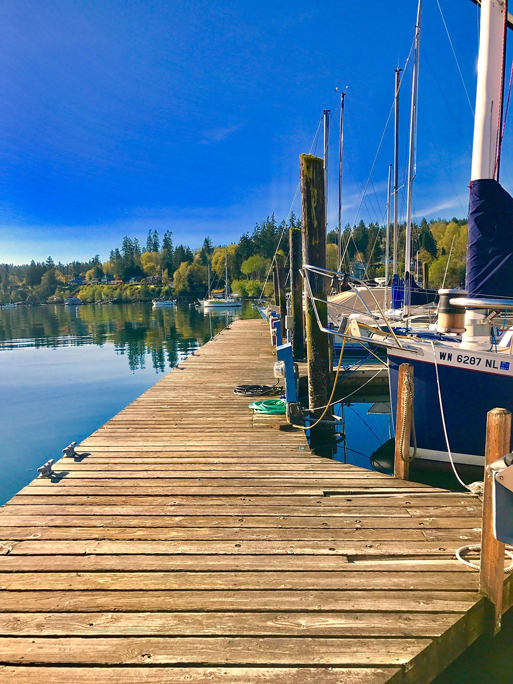 Pam Sproul - Dock View