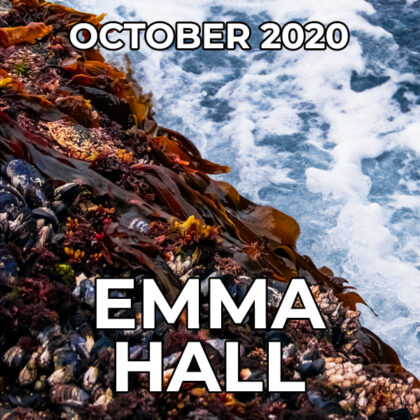 Emma Hall - Pegasus Artist Of The Month - October 2020